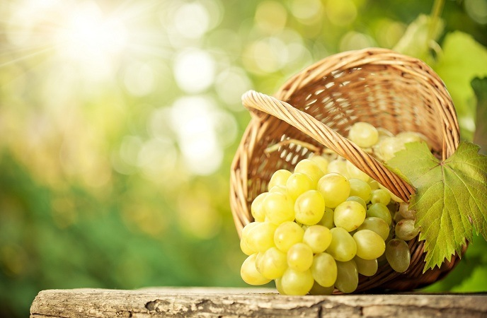 foods-good-for-skin-grapes