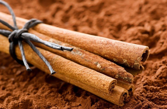 foods-to-lose-weight-cinnamon